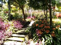 The beautiful Monte Palace Tropical Garden above Funchal, Madeira Island..