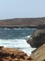 Aruba land tour - national park