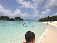 Trunk Bay St. John's
