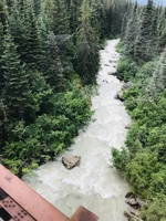 Skagway ... train & suspension bridge