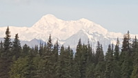 View of Denali from train