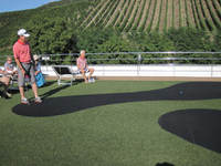 Putting contest. Look at vineyards in background.amazing.