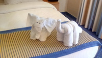 Two of the cute towel animals our cabin Steward made for us one day