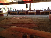 Seating at Wadi Rum lunch. Crawling with cats