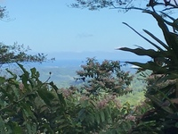 View from the rain forest in Costa Rica of our ship in the distance.