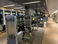 Gym is expansive and well equipped