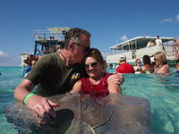 Interacting with the stingrays