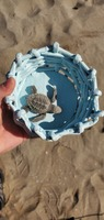 This is Bob.  He's my turtle for the Sea turtle experience in Mazatlan.