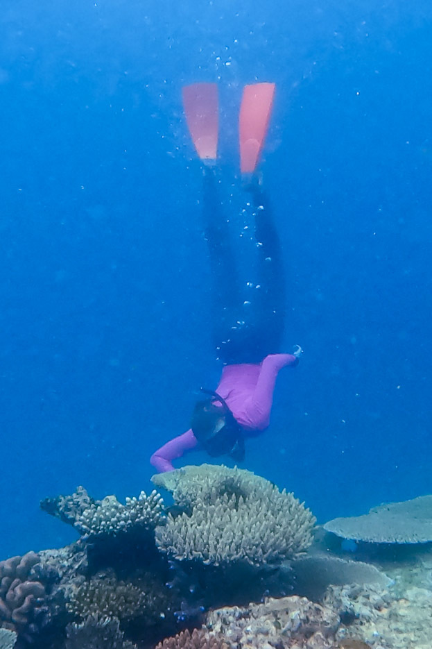 A bolder snorkeler than I.  Not that you needed to be, all the shots in th