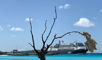 View of the Nieuw Amsterdam from the beach on Half Moon Cay