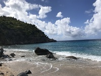 Picture of Shell Beach in St Barts!
