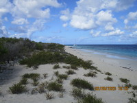 Windy beach on No Name Island, Bonaire